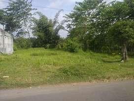 Tanah Pinggir jalan dekat Poltek dan Unej Jember