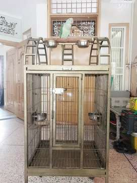 Large Cage for Meccow, grey, and raw parrots