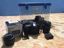 Canon 60D + 2lens + Drybox + Steadycam