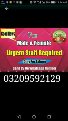 Males and females staff required online marketing