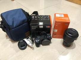 Sony a6500 + sony e 18-105mm f4
