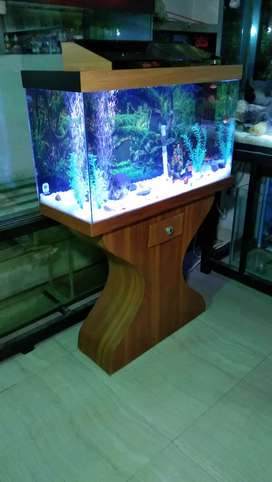 30 x 18 x 12 inches Fancy Aquarium with wooden stand