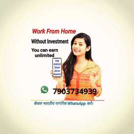 Work from home using mobile net