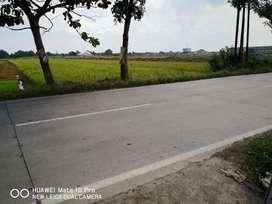Disewakan tanah di Jalan Adi Sumarmo dekat exit tol