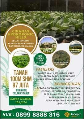 Jual Tanah Murah SHM Produktif Bonus Kebun Hidroponik di Puncak