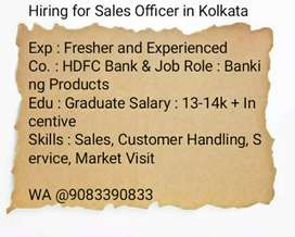 Sales Officer at HDFC BANK