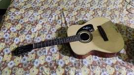 Givson's Hawaiian guitar