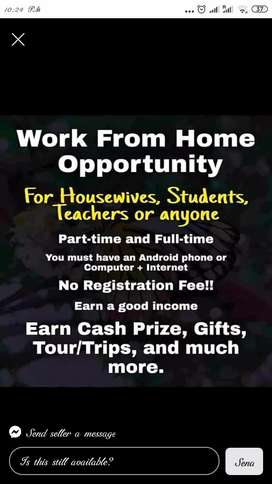 Work from home for women's