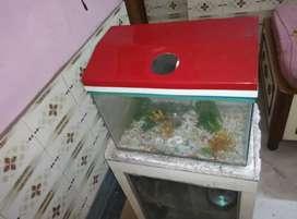 Aquarium and wooden SHOWCASE TABLE