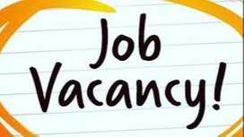 Female secretary required for company at delhi ncr