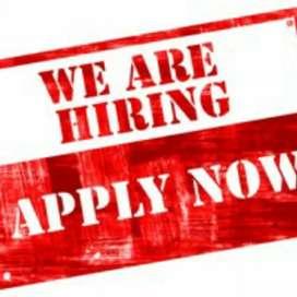 Urgent hiring for fresher's
