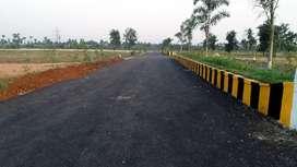 Open plots in kothavalasa,