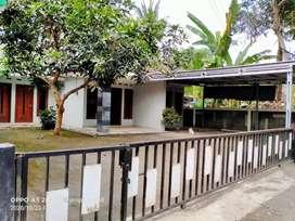 Dijual Cepat Turun Harga Rumah Bagus 600m dr Jl Raya Pandak Bantul