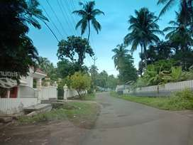 2 Acre Agriculture Land for sale at Vettukaad Thrissur