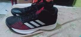 Sepatu adidas pro spark