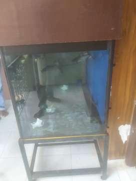 Aquarium 4*3