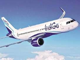 new vacancies for ground staff.limited seats. Indigo Airline Urgent hi