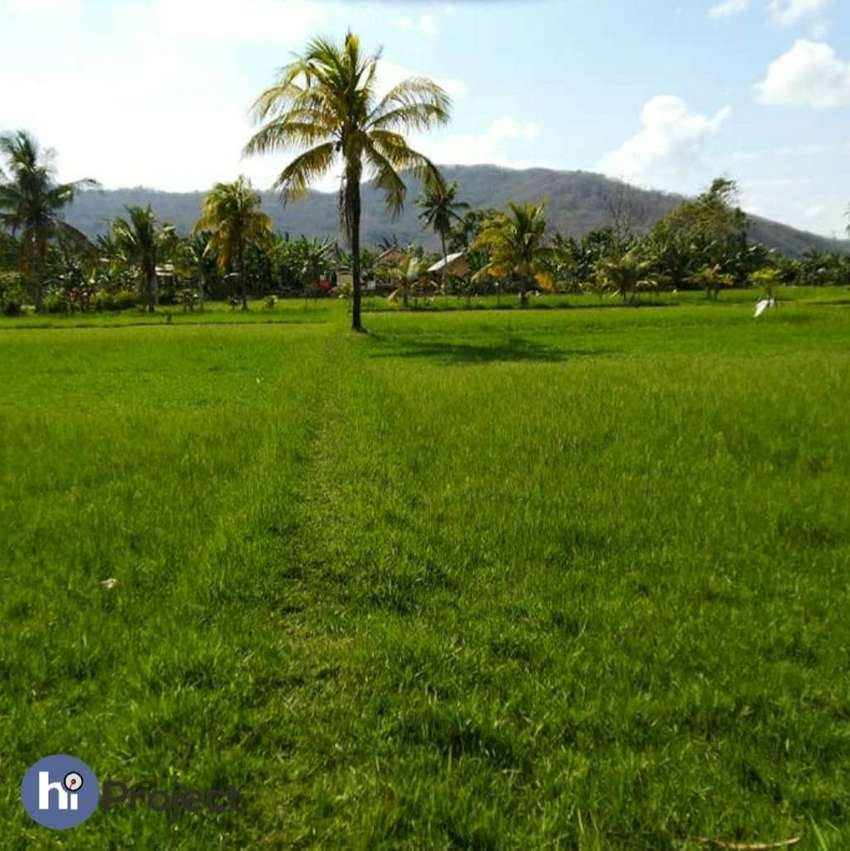 66 are Tanah di Gerung Lombok barat T357 0