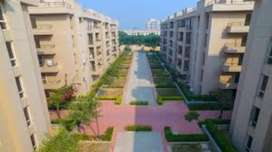 houses flats and plots in meerut