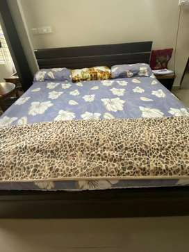 Godrej interio bed