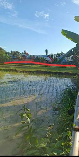Dijual Tanah 200 m2 Samping Kampus ATKP Maros