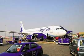 Ground staff vacancy in indigo airlines