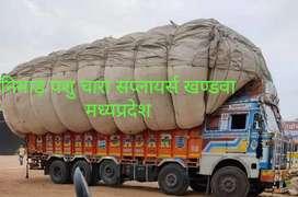 Nimad pashu chara supplier Khandwa Madhya Pradesh