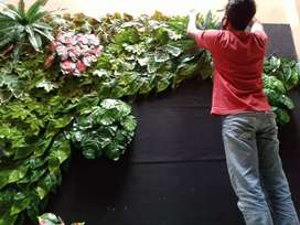Tanaman hias vertical garden indoor out door