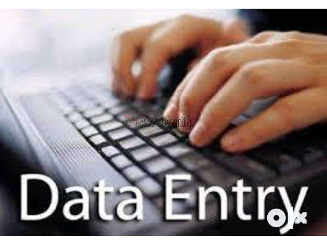 Earn a Steady Income at Home with typing data entry jobs 0