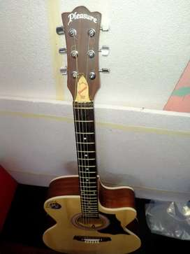 Pleasure Acoustic Guitar