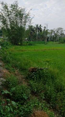 1.2 kottha land for sale in habisuk near jmch
