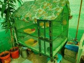 Love birds cage soo spacious