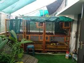 Bird cage Aviary setup