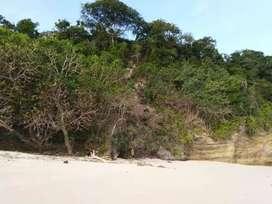 Dijual  Tanah Loss Pantai Tarakeito Sumba Barat NTT