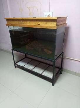 Aquarium for sele