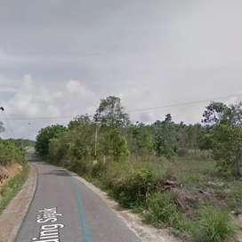 Tanah Luas +/- 2 Hektare