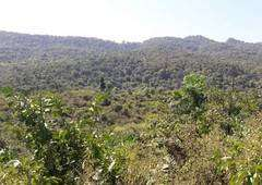 Agriculture land available for lease in Kudal