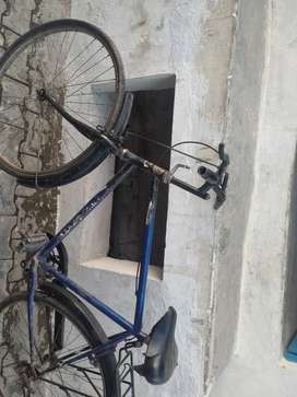 Bicycle  anil