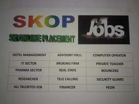 Job PLACEMENT and Loan