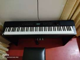 Digital Piano with Stand, Stool and 3 pedal unit
