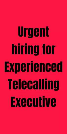 Experienced Telecalling executive in Insurance