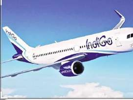 We r hiring for indigo airlines in all over india