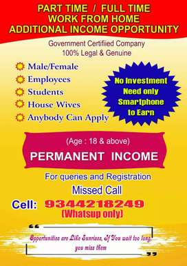 Part time business without investment  (No sales)