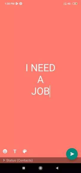 I need a sales boy job