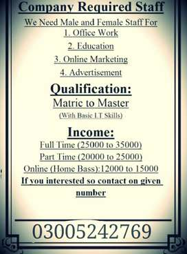 Online and office base job
