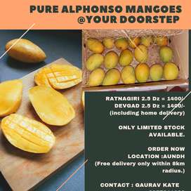 PURE ALPHONSO MANGOES AT YOUR DOORSTEP