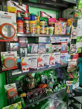 Fish food and accessories