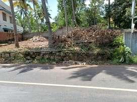 Residential plot Gandhipuram sreekaryam