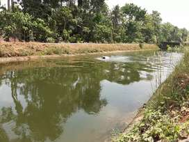 16 cent 3lak / cent. Front periyar vally canal
