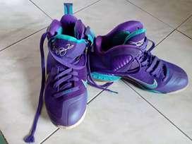 Sepatu nike lebron 9
